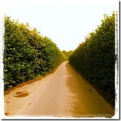 IMG_20120804_120635