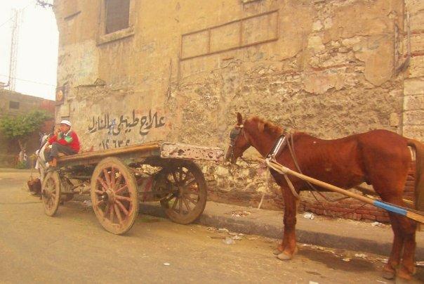 Egypt, Cairo, travel, tourism