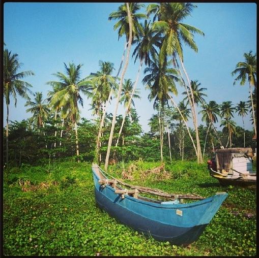 sri lanka, travel, south east asia, coast, beaches
